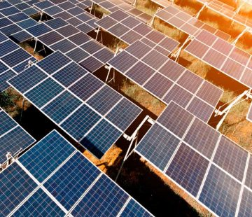 Photovoltaikfeld_800x800
