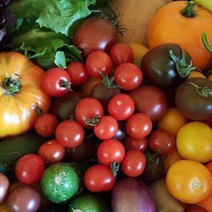 Rupp_Gemüse